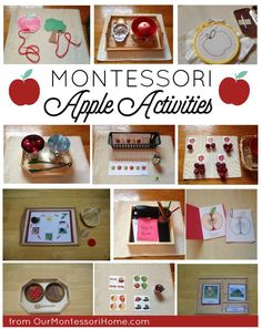 Montessori Apple Themed Activities - Johnny Appleseed Theme Unit & Lesson Plans The Effective Pictures We Offer You About Montessori shelves A quality picture can tell you many things. You can find th Frases Montessori, Montessori Practical Life, Montessori Preschool, Montessori Playroom, Montessori Elementary, Preschool Curriculum, Maria Montessori, Homeschooling, Preschool Apple Theme