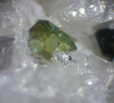Gadolinite-(Ce), (Ce,La,Nd,Y)2FeBe2Si2O10, Mt Cavalluccio, Sacrofano Caldera, Latium, Italy. Crystal size 0,4 mm. Copyright: Luigi Mattei