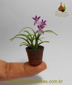 mini Miltonia orchid - handmade in clay cold porcelain Miniature Orchids, Miniature Plants, Unusual Flowers, Pretty Flowers, Mini Plantas, Miltonia Orchid, Mini Orquideas, Orchid Terrarium, Mini Bonsai