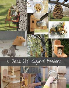 Cute squirrel feeders for hubby to make Squirrel Feeder Diy, Diy Bird Feeder, Outdoor Crafts, Outdoor Projects, Outdoor Fun, Outdoor Spaces, Homestead Survival, Backyard Birds, Homemade Gifts