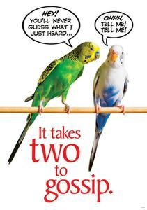 It Takes Two To Gossip Poster