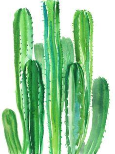 Opuntia Cactus, Original watercolor painting, Arizona, cacti yellow flowers, usa cactus cactus wall art by ORIGINALONLY on Etsy