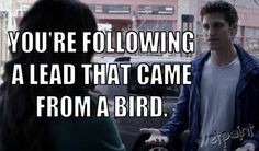 Haha... only in Pretty Little Liars would anyone trust a bird more than a human!