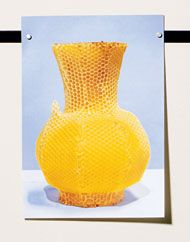 Honeycomb Vase - Tomas Libertiny: Here's an amazing DIY if you happen to be a beekeeper and can enlist the help of your bees.