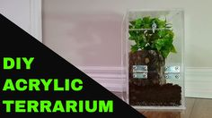 A place where people can come to learn and share their experiences of doing, building and fixing things on their own. Using A Router Table, Reptile Habitat, Reptile Cage, Build A Terrarium, Step Drill, Sanding Block, Electrical Tape, Aquaponics, Diy Crafts
