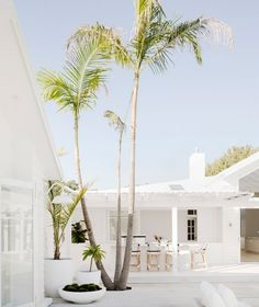 Happy Sunday gang 😘 Palms, Pots, Pergolas and a Pool - the four Ps for creating a coastal oasis 🏝😎 We'll teach you how to create your own… Inspire Me Home Decor, Style At Home, Exterior Design, Interior And Exterior, Interior Paint, White House Interior, Interior Ideas, Three Birds Renovations, Nautical Home