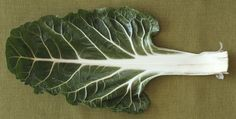3 Things You Can Do With Swiss Chard