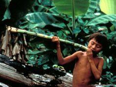 Povos nativos do Brasil. Cana-de-açúcar é doce e gostosa.