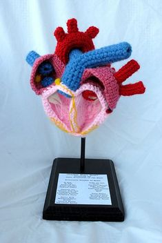 """I """"heart"""" crochet!=) I made this crochet heart as a final project for my Anatomy and Physiology 2 class. Finally a chance to combine my two great . Crochet Art, Crochet Animals, Crochet Crafts, Yarn Crafts, Crochet Toys, Crochet Patterns, Stitch Patterns, Diy Crafts, Knitting Projects"""
