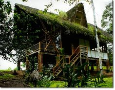 Bamboo: a Great Building Material Gets Even Better | PermacultureNews.org