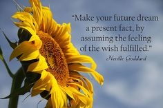 """""""Make your dream a present fact, by assuming the feeling of the wish fulfilled."""" Neville Goddard"""