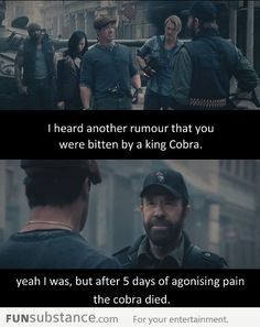 Oh gosh. Chuck Norris telling a Chuck Norris joke. I laughed so hard