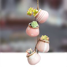 Perfect way to display your succulents and small plants. Find more succulent pots at Apollo Box! Small Flower Pots, Hanging Flower Pots, Ceramic Flower Pots, Ceramic Pots, Small Plants, Potted Plants, Small Flowering Plants, Hanging Succulents, Mini Plants