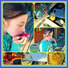 The children use different kinds of natural materials in making a perfume. They put the items which they have found and put them into the bowl, and then they use the mortar and pestle to grind all the items with little water in order to make a perfume. The children can find out different kinds of smells in our nature. (by Susana)