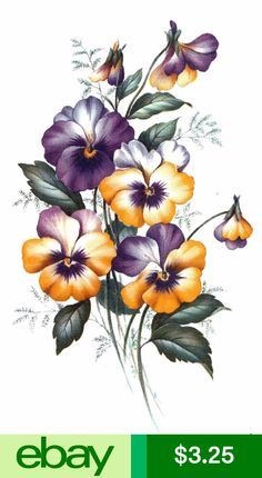 Purple Yellow Pansy Flower Bunch Select-A-Size Waterslide Ceramic Decals Tx Flower Art Drawing, Floral Drawing, Bunch Of Flowers Drawing, Flowers Bunch, Watercolor Flowers, Watercolor Paintings, Images Lindas, Pansy Tattoo, Botanical Flowers
