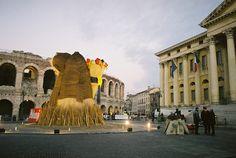 Rogo della Befana in Piazza Bra - Verona Verona, Louvre, Street View, Bra, Building, Travel, Viajes, Bra Tops, Buildings
