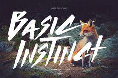 The Big Bold Font Bundle | Display Fonts on TheHungryJPEG.com | 7000