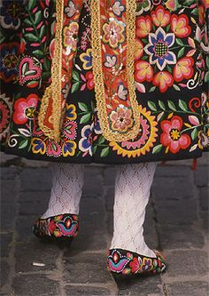 Traditional Spanish dress embroidery. Spectacular.