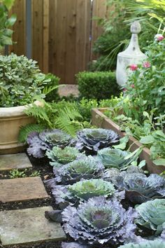 I love the use of pavers, raised beds, plants, veggies, herbs, etc. and then the pots add nice height and variation.