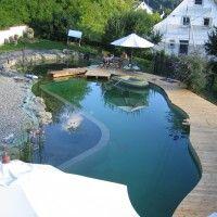 Projektreferenz Schwimmteich bei Tuttlingen - Dieser Schwimmteich entstand im Eigenbau mit der Unterstüzung von Mielke's Schwimmteiche - Spezialist für Zier-, Natur- und Badeteiche