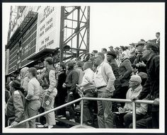 Spectators watching game two of the 1964 World Series between the St. Louis Cardinals and the New York Yankees at Sportsman's Park. ©Missouri History Museum