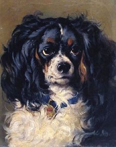 Painting of Dash, Queen Victoria's Tri - colored Cavalier King Charles Spaniel.