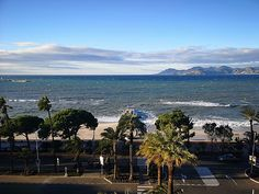 Hôtel Martinez u Cannesu - Travel Advisor Hotel Martinez, Trip Advisor, Explore, World, Beach, Water, Plants, Travel, Outdoor