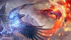 Thunderbird vs Phoenix