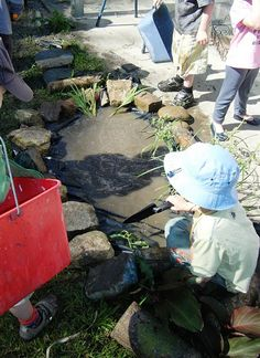 let the children play: creating a frog habitat at preschool