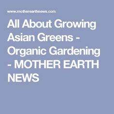 All About Growing Asian Greens - Organic Gardening - MOTHER EARTH NEWS