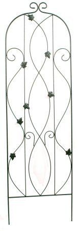 Commend Limited TR973-60 60-Inch Bronze Grape Wrought Iron Trellis by Commend Limited. $33.29. Metal tube and wrought iron construction. 18-Inch by 60-Inch. Grape design. Trellis. Bronze finish. Commend limited tr973-60 60-inch bronze grape wrought iron trellis