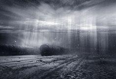 ********** by Zurab Getsadze on 500px