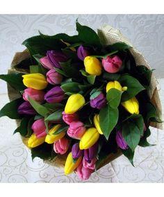 Tulips, Martie, Succulents, Plants, Image, Horsehair, Succulent Plants, Plant, Tulip