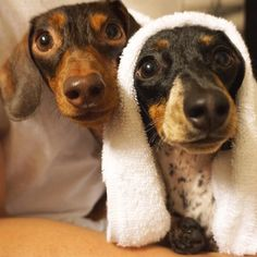 Indiana and Reese! So fresh and so clean clean.