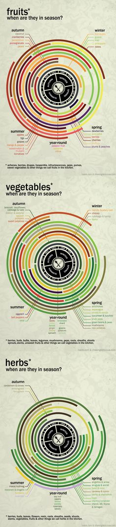 And what months specific fruits, vegetables, and herbs are in season: