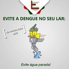 BLOG DOS INSETOS - Associação Brasileira de Franchising: EVITE A DENGUE NO SEU LAR!