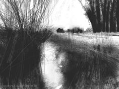 By davidparfittRI Day 18 #DrawingAugust #iPadart #SomersetLevels no.2