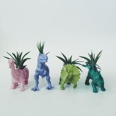 Customize Your Own Dinosaur Planter with Air Plant - Darby Smart (GOLD METALLIC T-REX)
