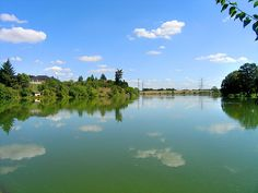 Description: Šeberák pond in Kunratice, Prague. Author: Czech Wikipedia user Paw. This file is licensed under the Creative Commons Attribution-Share Alike 3.0 Unported license: learn about it on the website.
