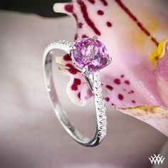 """This """"Melody"""" Diamond Engagement Ring by Vatche is set in 18k white gold and has been customized to hold a beautiful pink topaz center stone."""