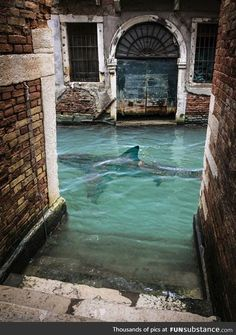"""The 40 Most Breathtaking Abandoned Places In The World Turquoise Canal in Venice, Italy. From """"The 40 Most Breathtaking Abandoned Places In The World"""" Places Around The World, Oh The Places You'll Go, Places To Visit, Around The Worlds, Places In Italy, Places In Europe, Dream Vacations, Vacation Spots, Italy Vacation"""