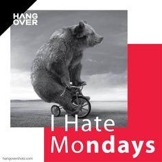 I Hate Mondays... #hangovershotz