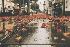 autumn...rain