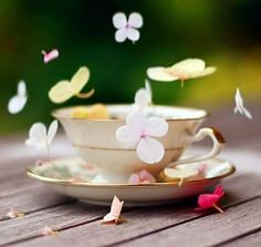 shabby chic :: morn-cup.jpg image by Kia31 - Photobucket