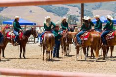 The 2014 Cal Poly Performance Horse Sale.