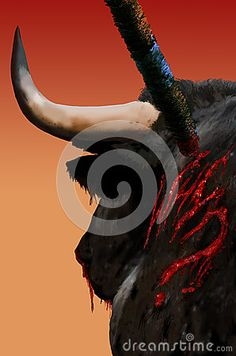Bull with a banderilla nailed on his back and bleeding abundantly. The path of the blood traces the question why?. Abstract presentation trying to make the public think about the nonsense and the cruelty of the bullfight.