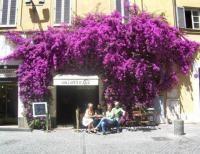 Salotto 42, Rome