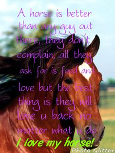 A horse is better than any guy out there, they don't complain, all they ask for is food and love but the best thing is they will love you back no matter what you do. I love my horse!
