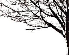 silhouette tree - Google Search