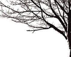 silhouette tree - Google Search